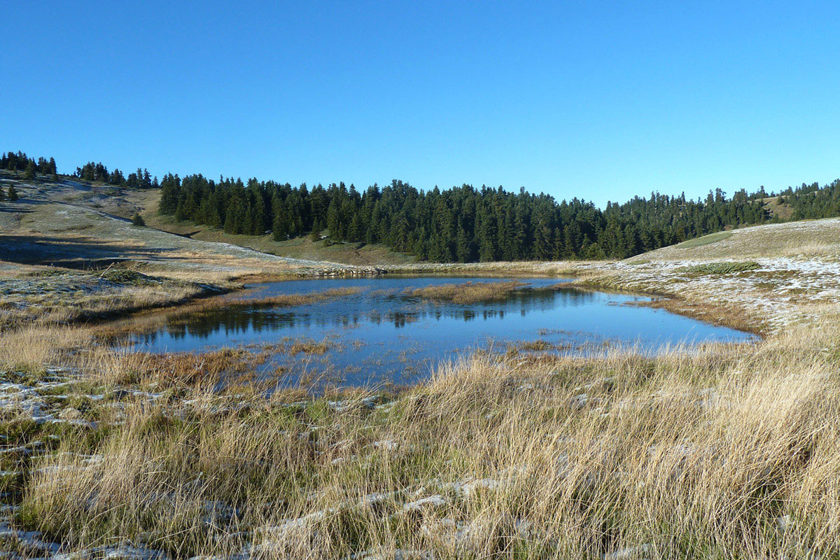 A temporary pond on Mt. Oiti. Photo Ch. Georgiadis