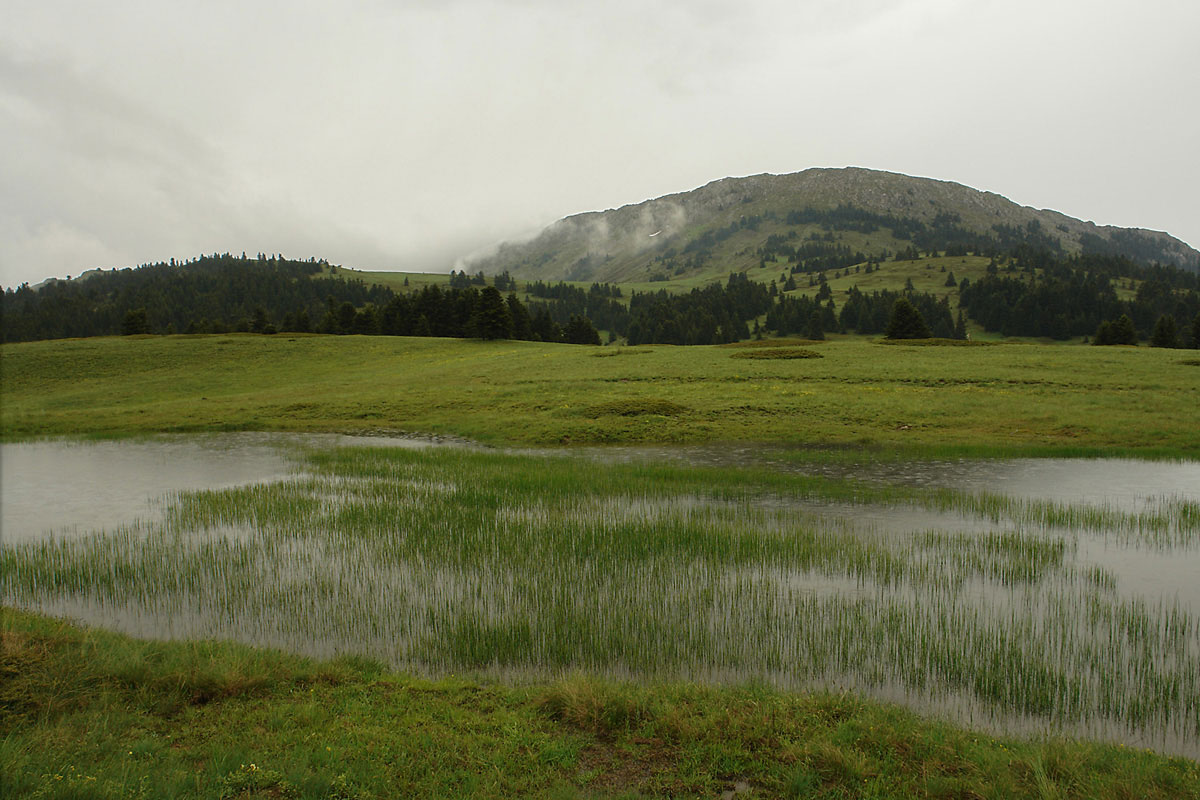 Temporary pond on Mt. Oiti. (Photo: G. Karetsos)
