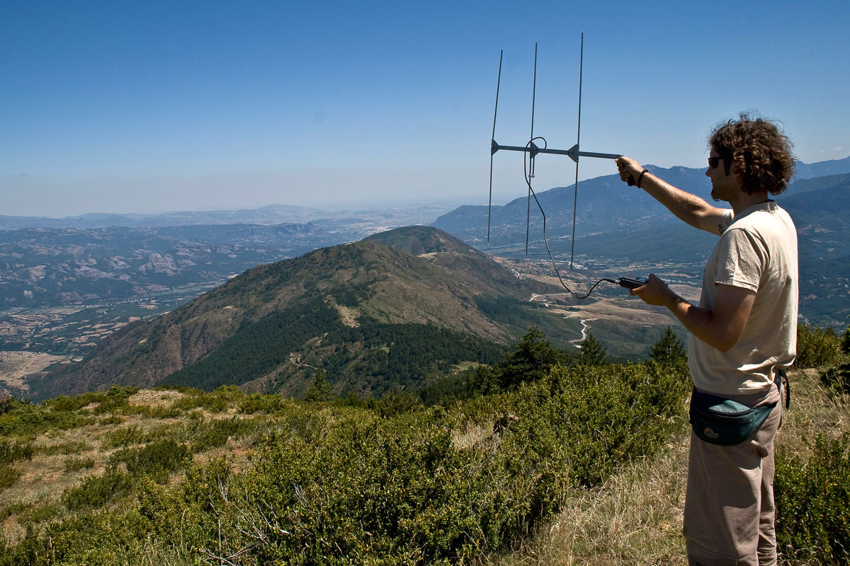 Monitoring the movements of animals with radio transmitters (Photo: A. Karamanlidis/ARCTUROS)