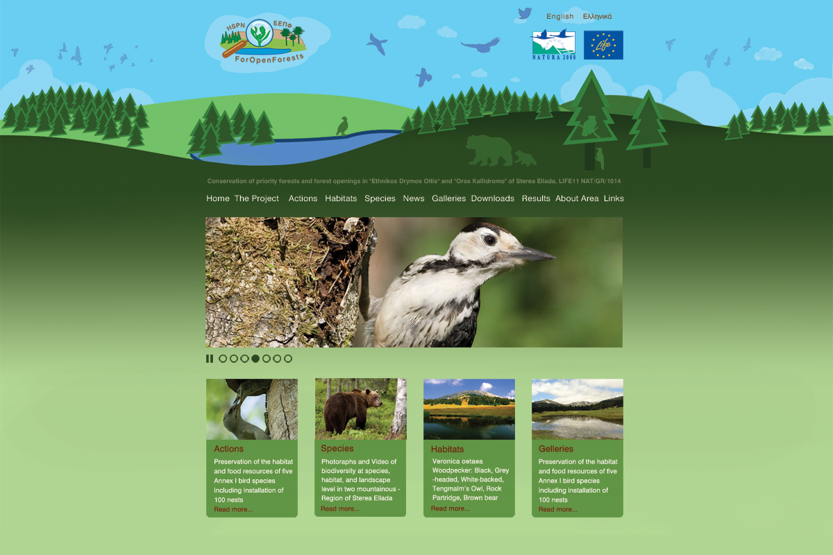 Web Site www.foropenforest.org (Design and Photo: Lydia Lada)