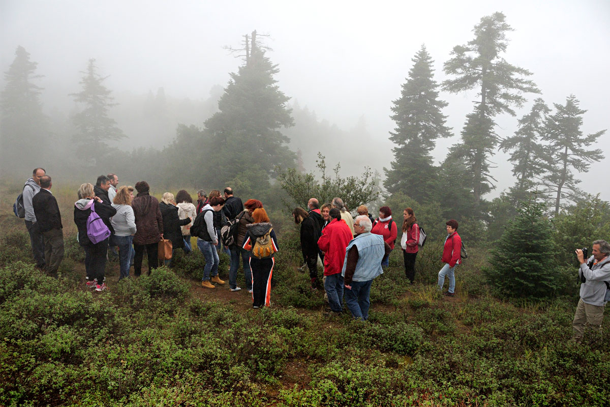 Field excursion during the seminar (Photo: Christos Georgiadis).