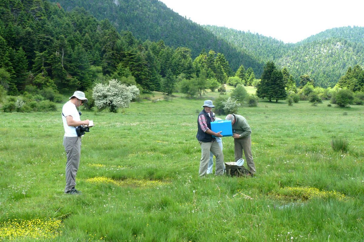 Recording and analysis of geological data by members of the project team  (Photo: Christos Georgiadis)
