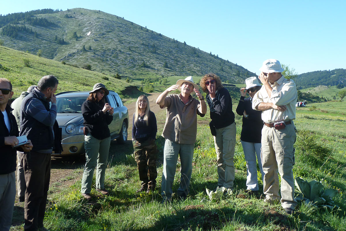 Meeting of the scientific teams in the field  (Photo: Christos Georgiadis)