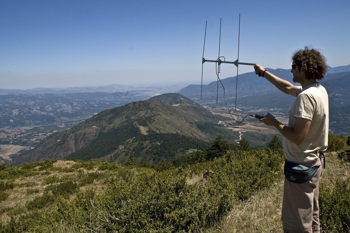 Παρακολούθηση μεγάλων θηλαστικών με ραδιοπομπούς. (Φωτο: Α. Καραμανλίδης/ΑΡΚΤΟΥΡΟΣ)