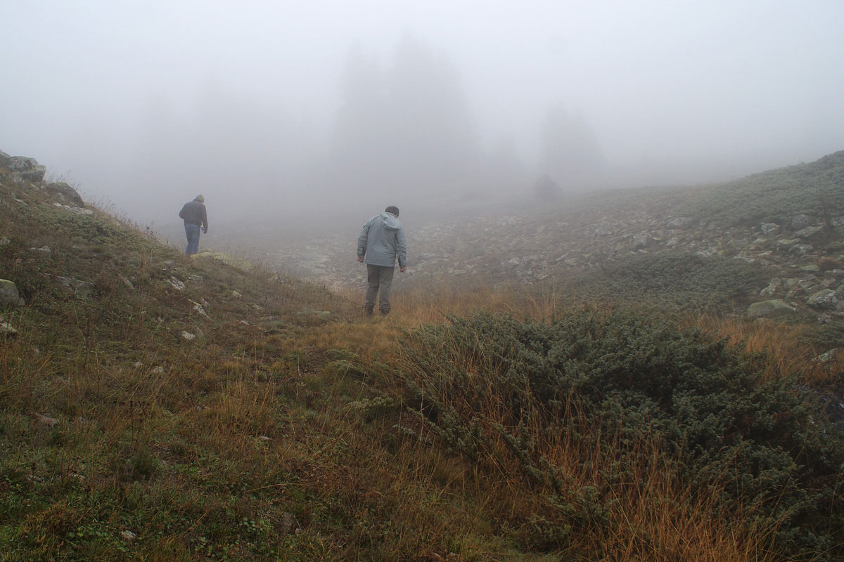 Field work in the grasslands on Mt. Oiti (Photo:Eugene Shogolev)