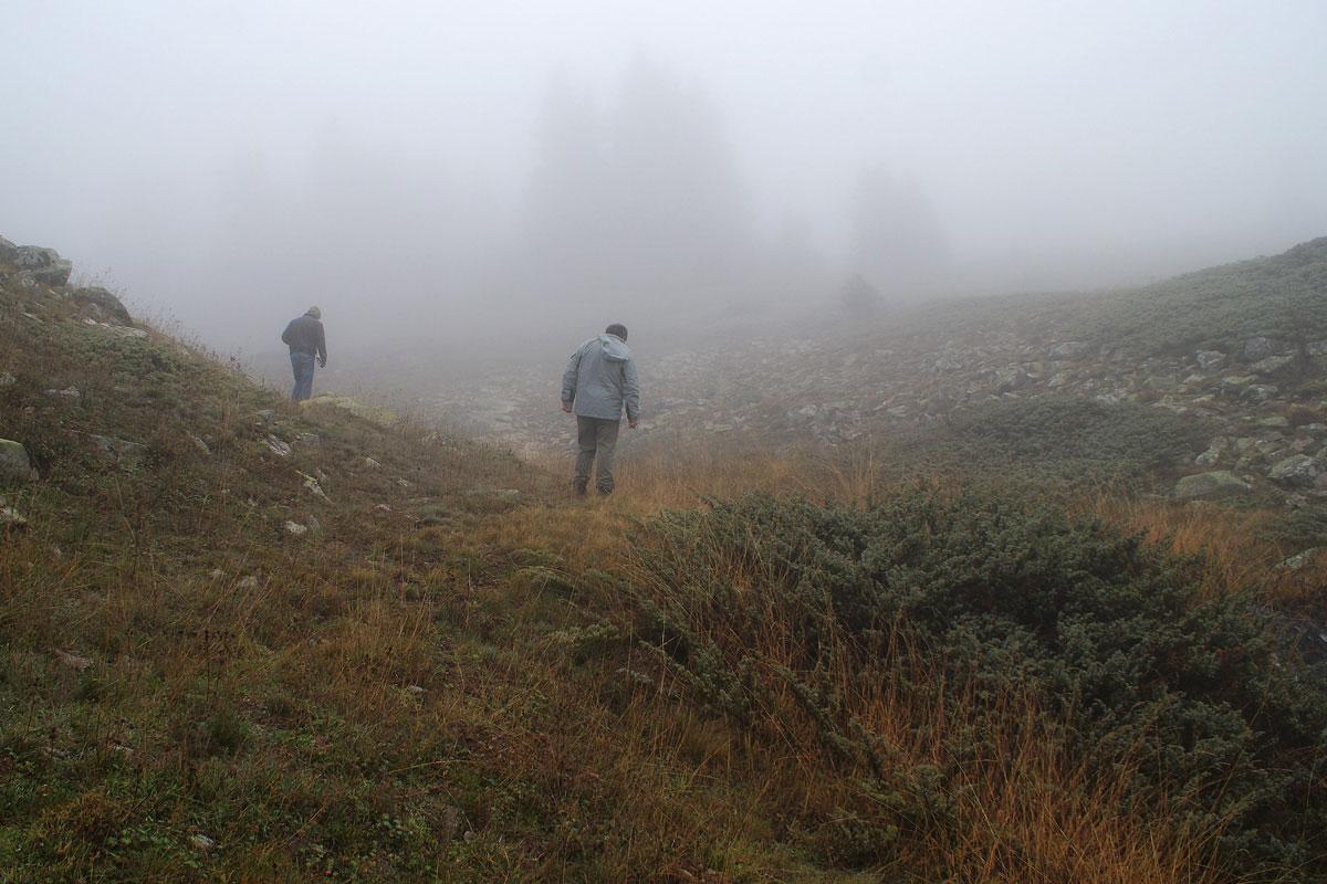 Εργασία πεδίου στα ορεινά λιβάδια της Οίτης. (Φωτο: Eugene Shogolev)