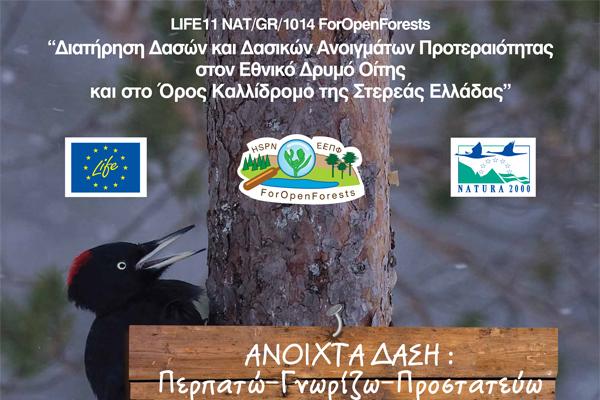 Η αφίσα του έργου
