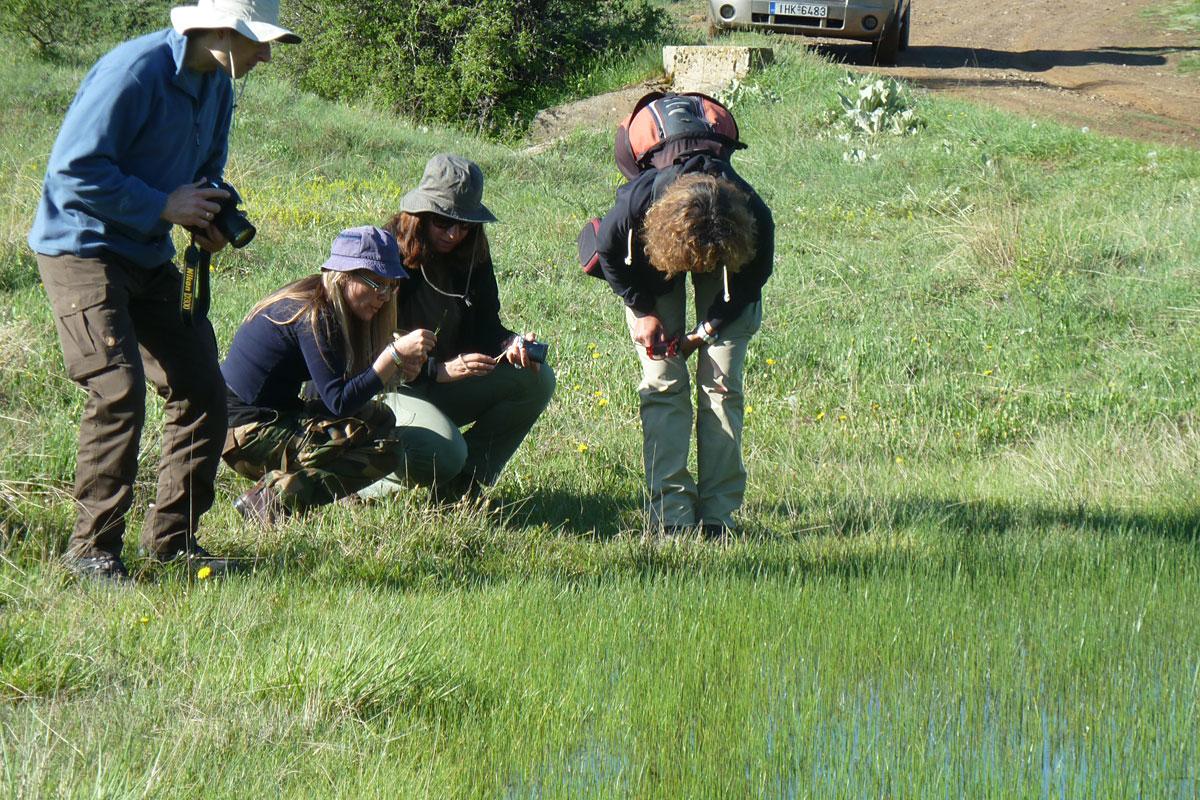 Παρατήρηση της χλωρίδα σε εποχικό λιμνίο στην Οίτη  (Φωτο: Χρήστος Γεωργιάδης)