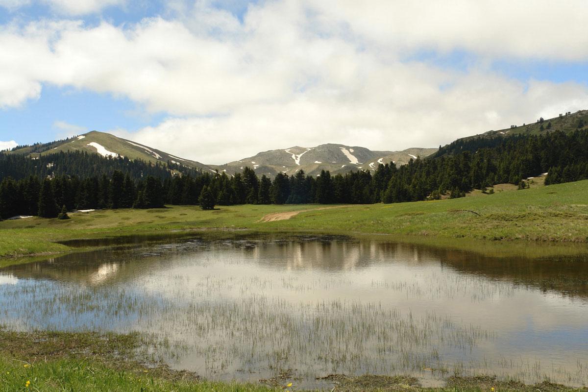 Εποχικό λιμνίο στην Οίτη. (Φωτο: Γιώργος Καρέτσος)